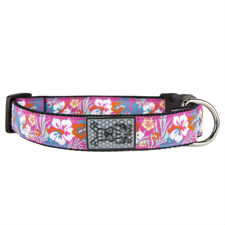 "RC Pet Products Hibiscus 1"" Adjustable Dog Collar, Large"