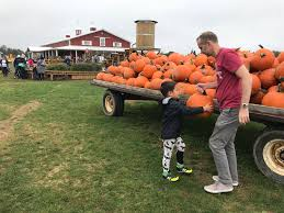Pumpkin Patch Naples Fl by 839 Pumpkin Patches And Spices