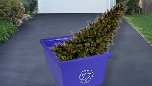 Recycle Your Trees Chicago Offers Yearly Christmas Tree Recycling