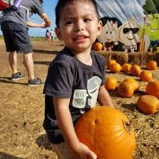 Waimanalo Pumpkin Patch Oahu by Aloun Farms 461 Photos U0026 108 Reviews Fruits U0026 Veggies 91