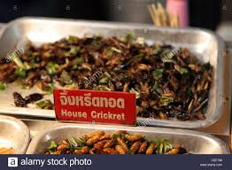 cuisine soldee house crickets sold as food at the bazaar food court in