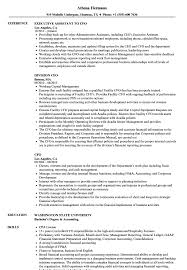 CFO Resume Samples | Velvet Jobs Best Executive Resume Award 2014 Michelle Dumas Portfolio Examples Chief Operating Officer Samples And Templates Coooperations Velvet Jobs Medical Sample Page 1 Awesome Rumes 650841 Coo Fresh President Visualcv Ekbiz Senior Coo Job Description Iamfreeclub Sales Lewesmr