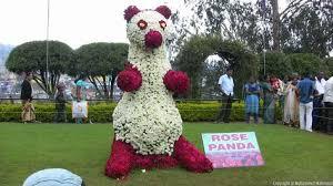 12 best Rose Garden Ooty Tamil Nadu India images on Pinterest