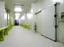 chambre froide commercial porte de chambre froide négative porte frigorifique