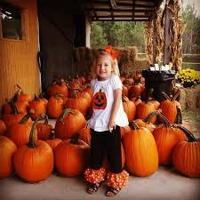 Pumpkin Patch Savannah Ga 2015 by You Can Pick A Pumpkin From The Pumpkin Patch To Take Home