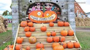 Best Pumpkin Patches In Cincinnati by 10 Best Pumpkin Patches Around Indianapolis