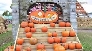 Pumpkin Patches Cincinnati Ohio Area by 10 Best Pumpkin Patches Around Indianapolis