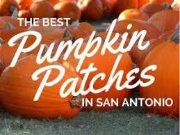 Best Pumpkin Patch Indianapolis by Best 25 Pumpkin Patch San Antonio Ideas On Pinterest San