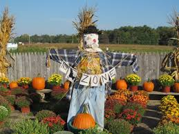Pumpkin Picking In Freehold Nj by The 12 Best Pumpkin Patches In New Jersey To Visit This Fall