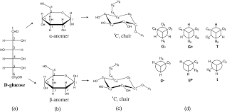Chair Conformations Axial And Equatorial the conformational behaviour of free d glucose u2014at last chemical
