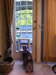 kinds sliding door dog door