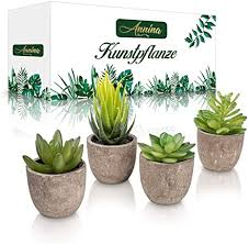 annina kleine kunstpflanze 4 stück künstliche sukkulenten pflanzen aus kunststoff mit robusten topf perfekte größe deko für büro