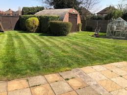 100 The Lawns Lord Of The Lawns Mowing And Turfing In WS14 Lichfield For