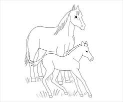 Horse And Foal Coloring Page