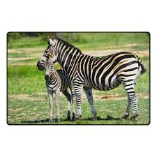 Cheap Zebra Style Rugs Find Zebra Style Rugs Deals On Line At