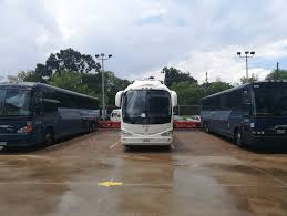 Select Bus Service Wikipedia