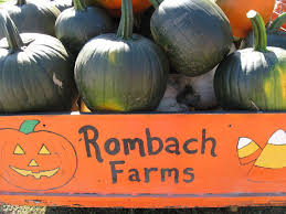 Pumpkin Patches Maryland Heights Mo by Rombach Farms Closes In Chesterfield Due To Family Feud Metro