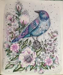 Coloringbook Bird With Jewlery