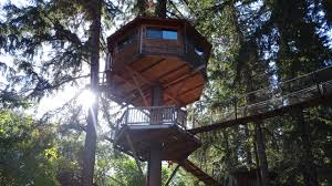 100 Tree House Studio Wood Design Engineering Precision Structural