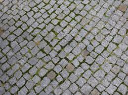 Free Images Grass Street Lawn Texture Sidewalk Floor Cobblestone Asphalt Pavement Walkway Model Green Soil Stone Wall Net Cube Masonry