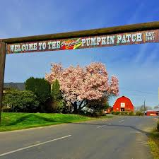 Pumpkin Patch Austin Tx 2015 by Don U0027t Miss These Great Pumpkin Patches In Oregon This Fall