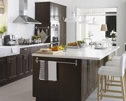 16 Excellent Ikea Kitchen Pics Designer Ramuzi – Kitchen Design