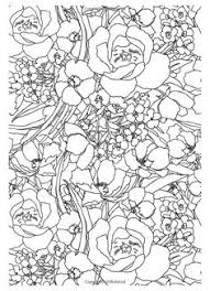 The Gorgeous Colouring Book For Grown Ups Discover Your Inner Creative Flowers