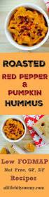 Pumpkin Hummus Recipe by The 25 Best Pumpkin Hummus Ideas On Pinterest Fall Fruits