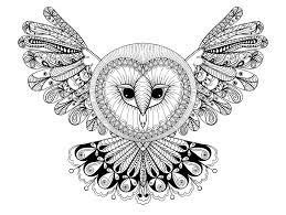 Owl With Big Head Like A Mandala
