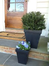 Terrific Pottery Barn Planters 71 Pottery Barn Planters Indoor