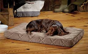 dog beds sale orvis