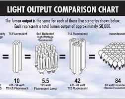 fluorescent lights beautiful fluorescent light bulb wattage 67