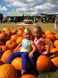 Elgin Christmas Tree Farm Pumpkin Festival by Austin Family Calendar Oct 15 21