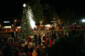 Christmas Tree Recycling East County San Diego by Santee Trolley Square Scouting Santee