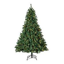 65 Pre Lit McKinley Pine Christmas Tree With 500 Clear Lights