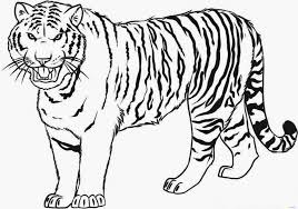 Tiger Coloring Pages To Print 17 Modest 94 4235