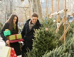 Krinner Christmas Tree Genie Xxl Canada by Krinner Christmas Tree Genie Xxl Photo Album Best Christmas Tree