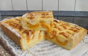 mini aprikosen pudding kuchen