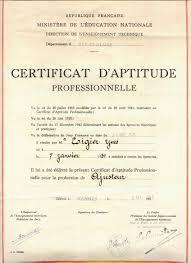 certificat d aptitude professionnelle wikipédia