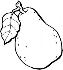 Fruit Coloring Pages Printable Pear