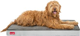 Bolster Dog Bed by Brindle Orthopedic Memory Foam Dog Bed U0026 Reviews Wayfair