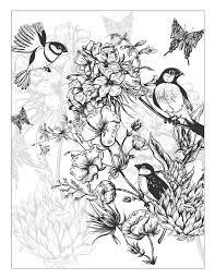 ClippedOnIssuu From Beautiful Flowers Detailed Floral Designs Coloring Book