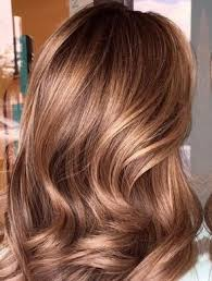 The 25 best Caramel brown hair ideas on Pinterest