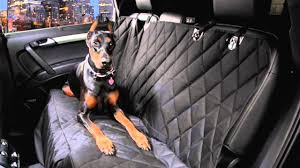 Black Regular Dog Car Seat Cover - YouTube Happypets Luxury Waterproof Pet Car Seat Cover Nonslip Backing And Ds1 Camo Durafit Covers Custom Fit Truck Van For Suv Non Slip Hammock Bonve Dog Pets Liner Durable Nonslip Front Isuzu N75 Heavy Duty Tailored Tipper Silverado Rugged Cat With Dogs Viewing Window Shop Kinbor Universal Protector Rear Back 42008 Ford F150 Xlt Super Cab 2040 Split