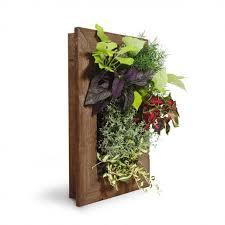 Living Wall Planter Kit Wooden Frame