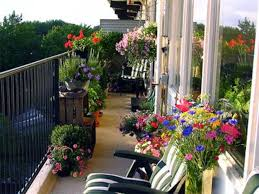 Seattle Full Orating Garden Designed Photos Designs Hanging Patio Best Plants For Small Balcony