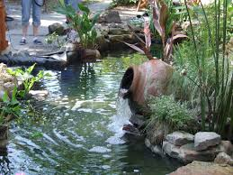 Fresh Pictures Of Backyard Ponds 43 About Remodel Home Decorating ... Backyards Mesmerizing Pond Backyard Fish Winter Ideas With Waterfall Small Home Garden Ponds Waterfalls How To Build A In The Exteriors And Outdoor Plus Best 25 Waterfalls Ideas On Pinterest Water Falls Pictures Filters For Interior A And Family Hdyman Diy Fountains Above Ground Satuskaco To Create Stream For An Howtos 30 Diy Your Back Yard Waterfall