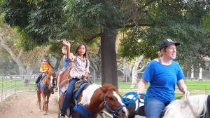 Irvine Ranch Railroad Pumpkin Patch by Horseback Riding At Irvine Railroad Park Youtube
