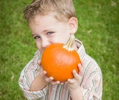 Bengtson Pumpkin Farm Lockport by Fall Festivals And Oktoberfests 2017 Kidlist U2022 Activities For Kids