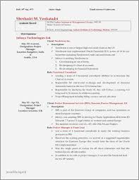Information Technology Manager Resume Examples 2016 Beautiful